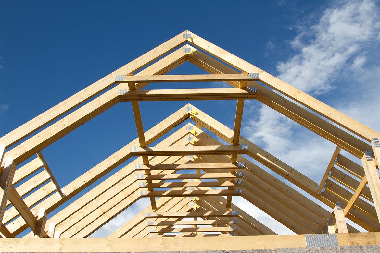 dakwerken met Slowaken