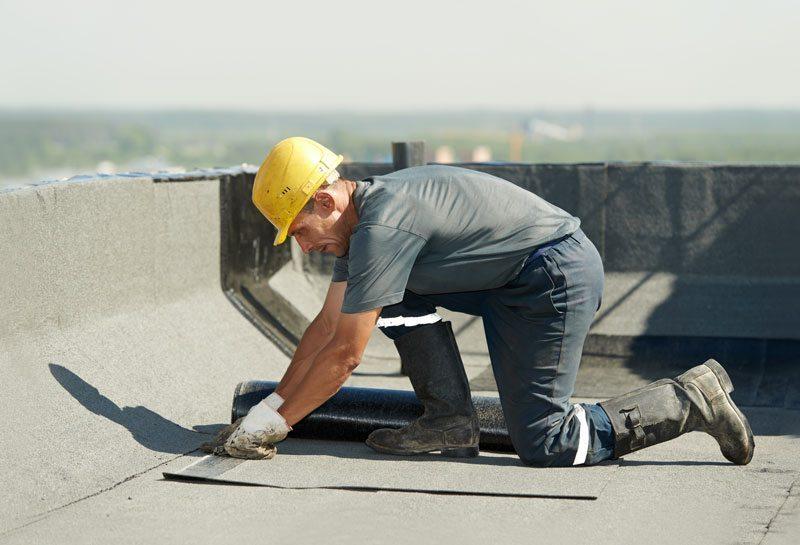 subsidies voor dak vlaamse bouw met Polen